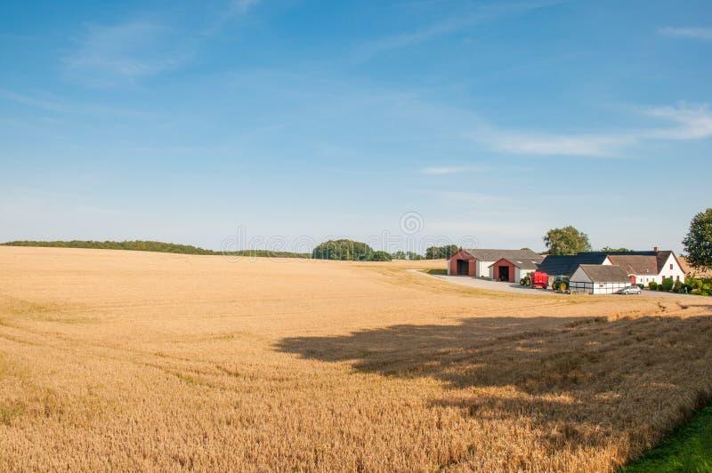 Bauernhof auf Insel von Moen lizenzfreie stockfotografie