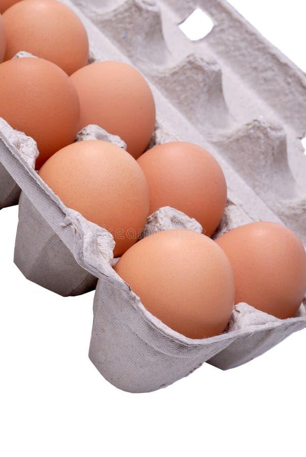 Bauernhof-Eier stockfotos