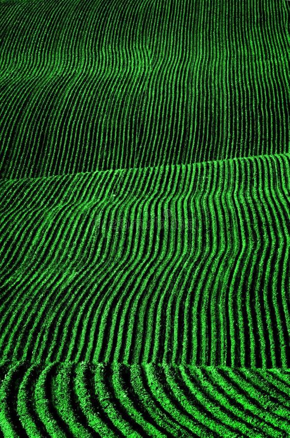 Bauernhof-Feld-gepflogene Schmutz-Grundfurchen bereit zum Pflanzen lizenzfreie stockfotografie