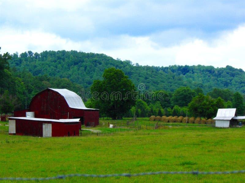 Bauernhof-Landschaft stockbild