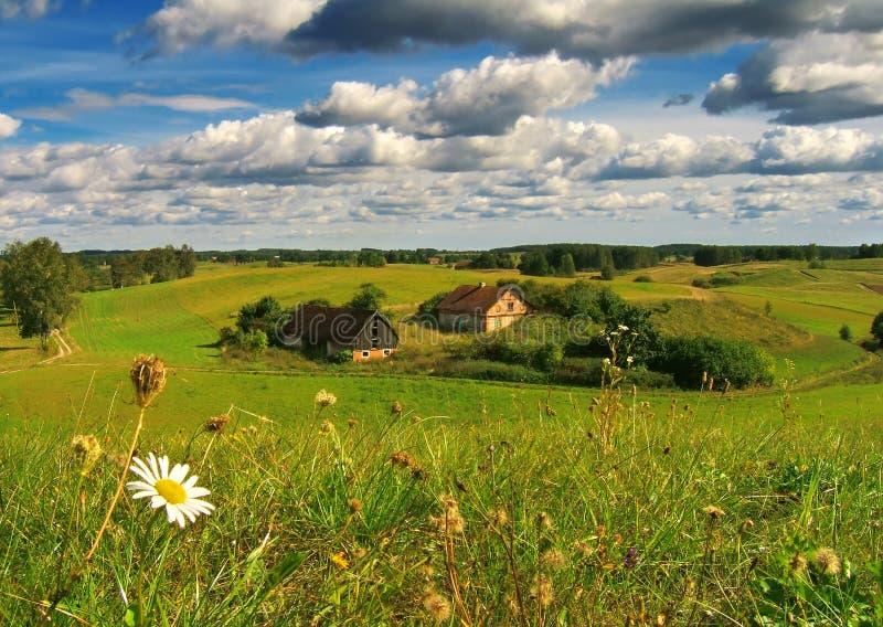 Bauernhof mit Blume lizenzfreie stockbilder