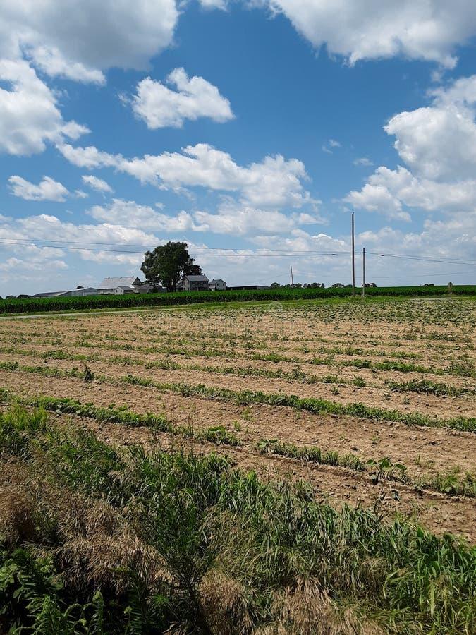 Bauernhof mit Feld und Wolken lizenzfreie stockfotografie