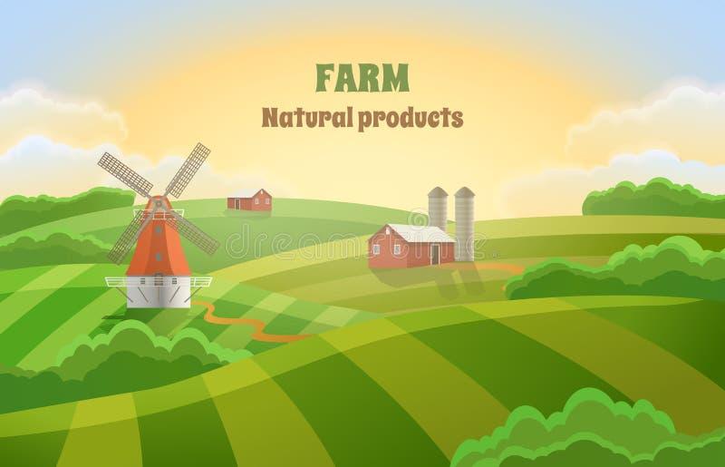 Bauernhof mit grünen Feldern Ländliche Landschaft mit einer Mühle lizenzfreie abbildung
