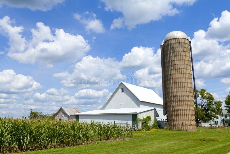 Bauernhof mit Mais-Feld lizenzfreies stockbild