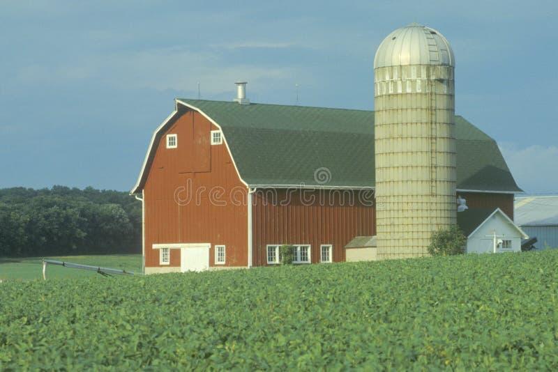 Bauernhof mit rotem Stall- und Kornsilo lizenzfreie stockfotografie