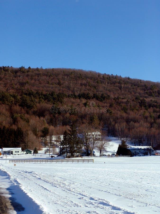 Bauernhof Mt.-Tom Stockfotografie