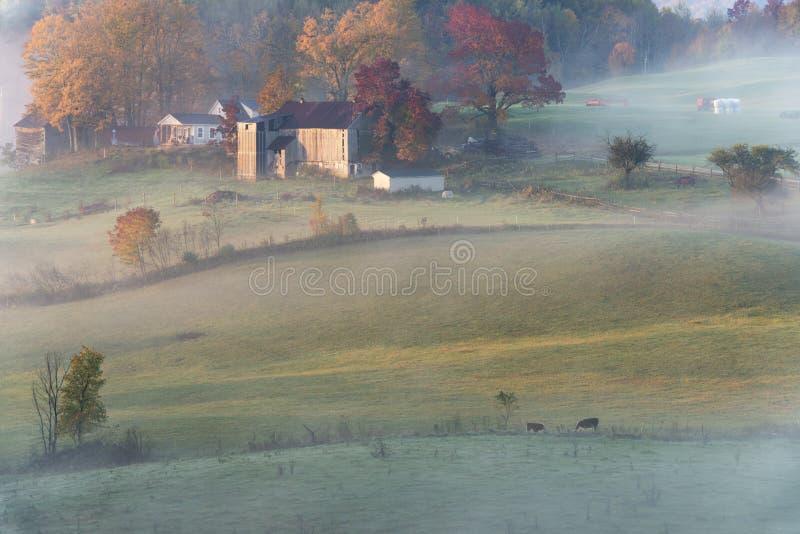 Bauernhof-Sonnenaufgang lizenzfreies stockfoto