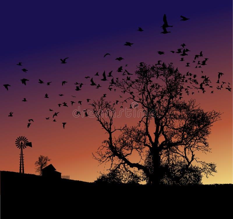 Bauernhof-Sonnenuntergang vektor abbildung