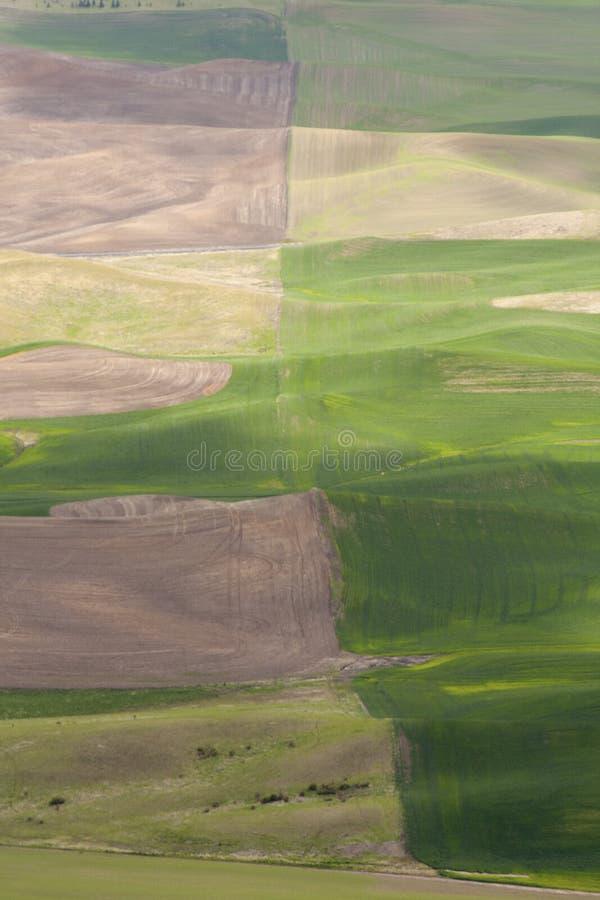 Bauernhof- und Weizenfelder lizenzfreies stockbild