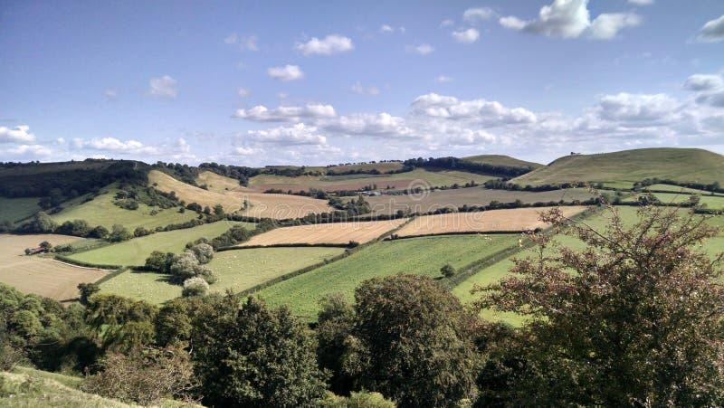 Bauernhoffelder England-Patchwork, das Erde bewirtschaftet lizenzfreies stockfoto