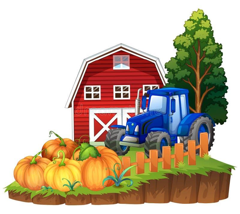 Bauernhofszene mit blauem Traktor und Kürbisen lizenzfreie abbildung