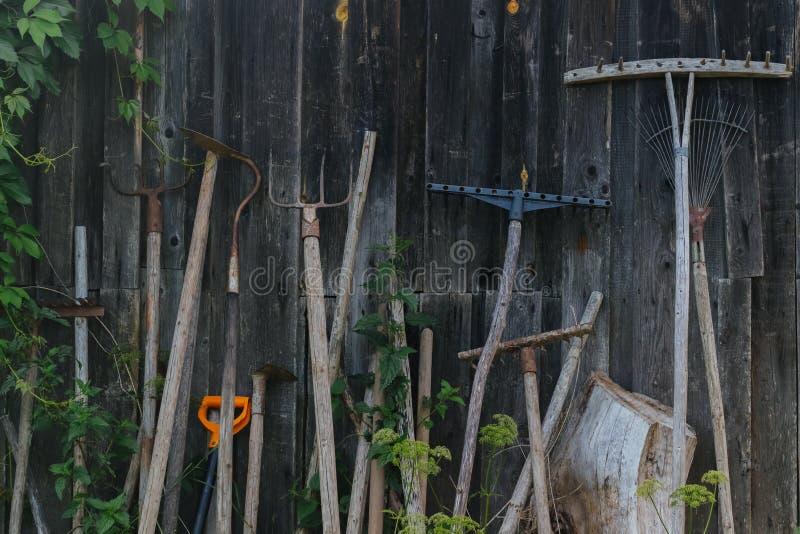 Bauernhofwerkzeuge auf einem hölzernen Hintergrund lizenzfreies stockfoto