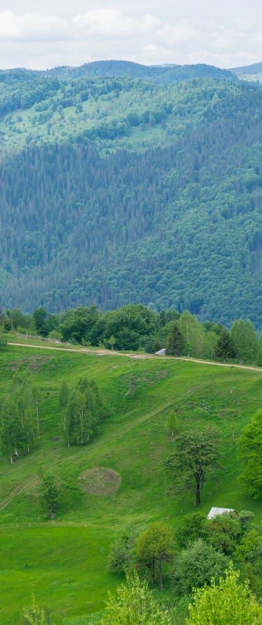 Bauernhofwiesen in den Bergen stockfotografie