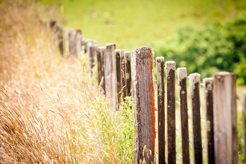 Bauholz-Bauernhof-Zaun New Zealand Stockfoto - Bild von draht ...