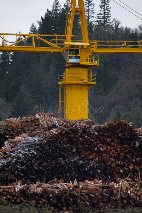 Bauholz an einer Papiermühle lizenzfreies stockbild