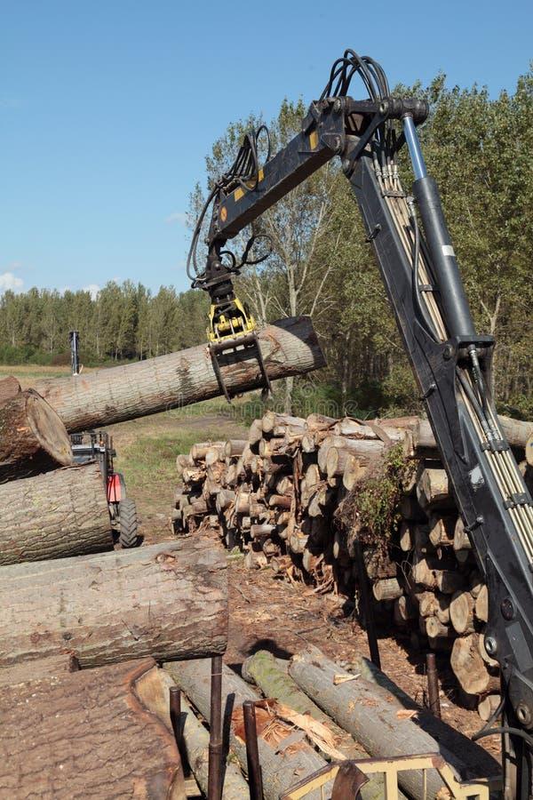 Bauholzindustrie stockbilder