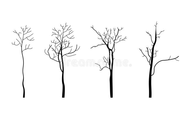 Baum branch3 stockbild