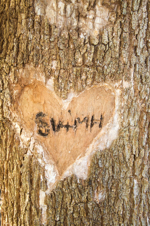 Baum, der im geheimen Garten schnitzt stockfoto