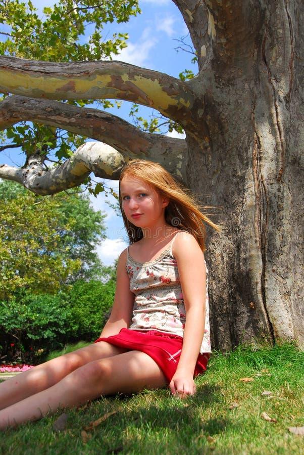 Baum des jungen Mädchens lizenzfreies stockbild