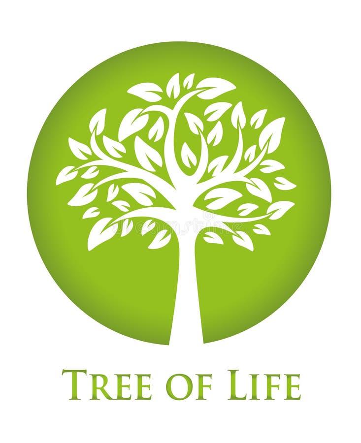 Baum des Lebens vektor abbildung