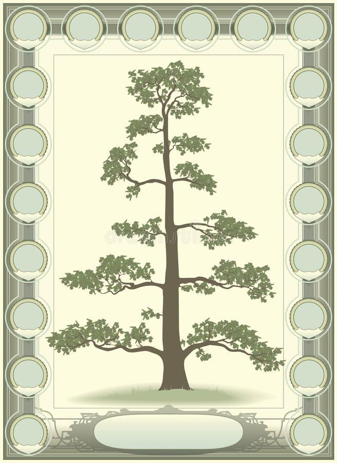 Baum Des Lebens - Genealogie Vektor Abbildung - Illustration von ...