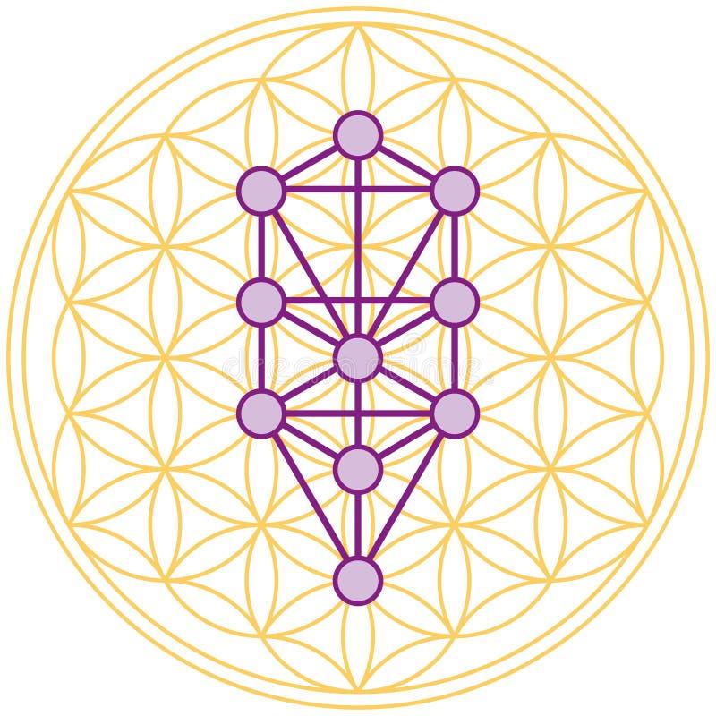 Download Baum Des Lebens Passt Perfektes In Der Blume Des Lebens Stockbild - Bild von hexagon, schönheit: 34372297
