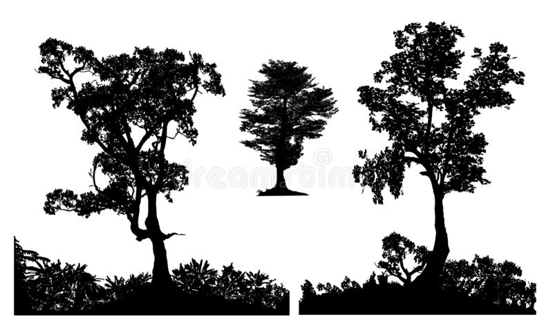 Baum- des Waldesgartenschattenbild stellte drei ein lizenzfreie stockbilder