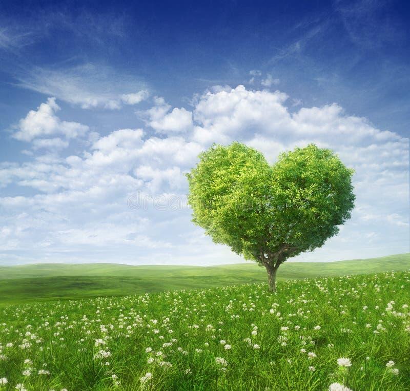 Baum in Form des Herzens, Valentinsgrußtageshintergrund lizenzfreie stockfotos