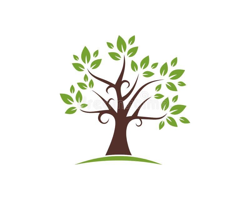 Baum-gesunde Leben-Logoschablonen-Vektorikone vektor abbildung