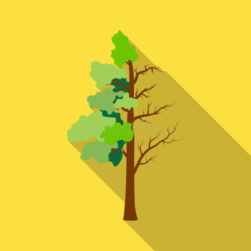 Baum halb voll vom grünen Blatt und von der halbtrockenen Ikone in der Entwurfsart auf weißem Hintergrund Bio- und Ökologiesymbol vektor abbildung