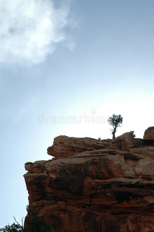 Baum-Klippen-Wolke lizenzfreie stockfotos