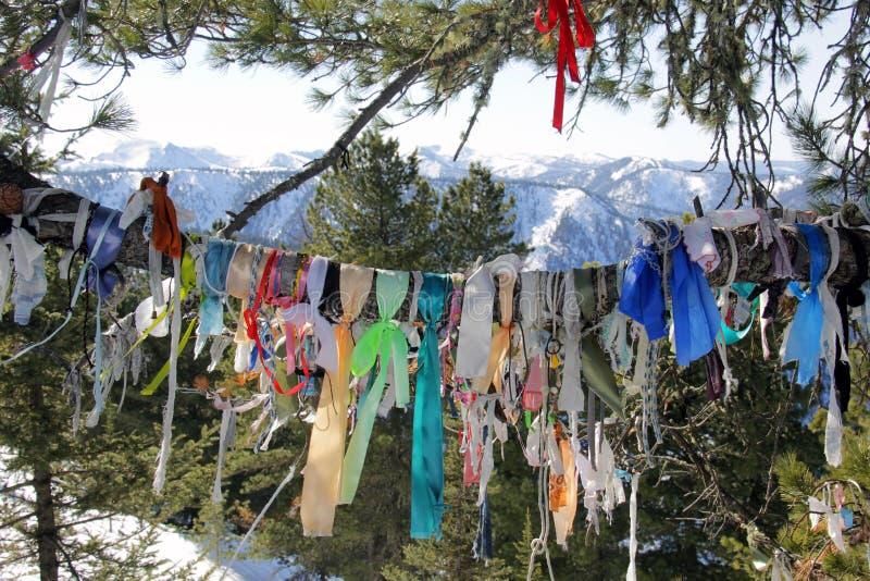 Baum mit Bändern in den Bergen stockfotos