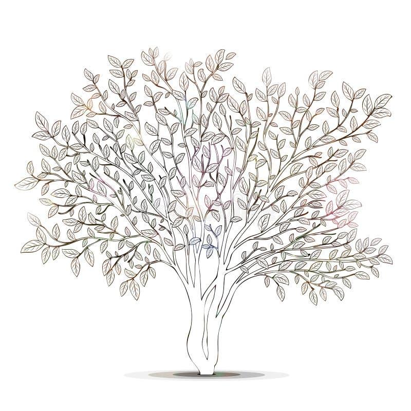 Großzügig Pecan Baum Färbung Seite Fotos - Malvorlagen-Ideen ...