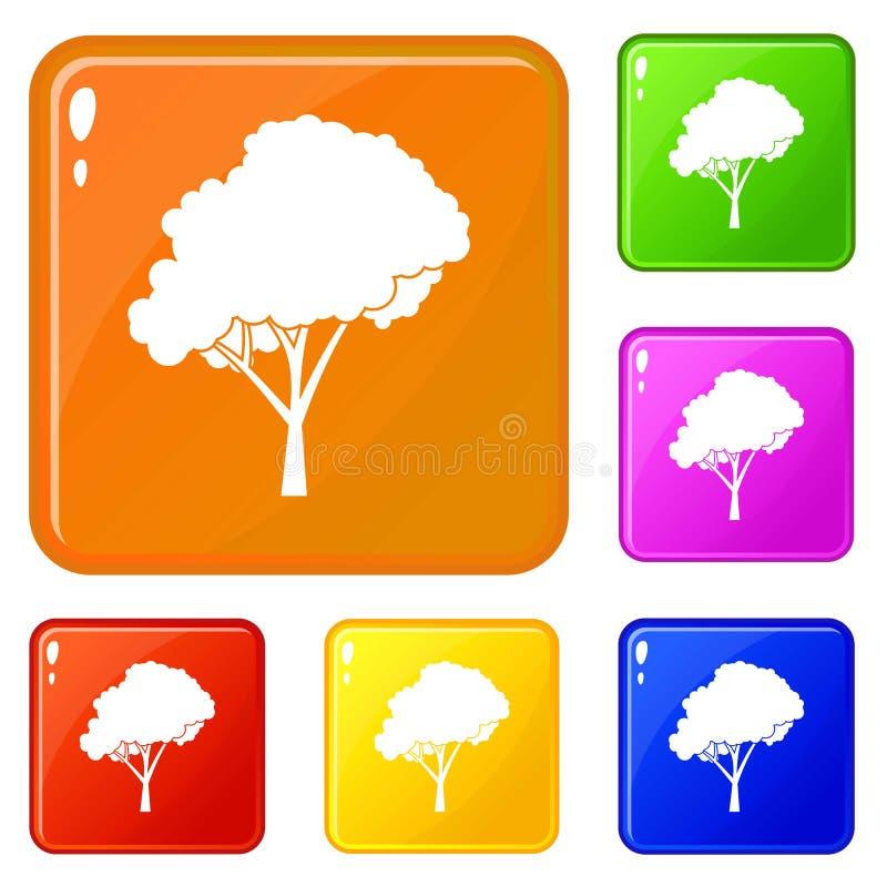 Baum mit Ikonen einer gerundeten Krone stellte Vektorfarbe ein lizenzfreie abbildung