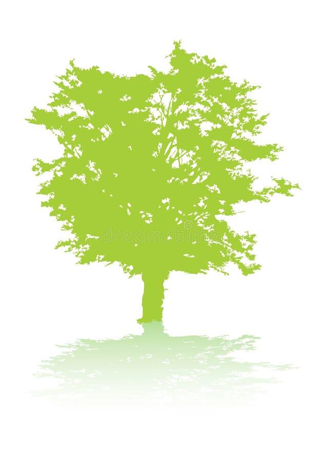 Baum mit Schatten stock abbildung