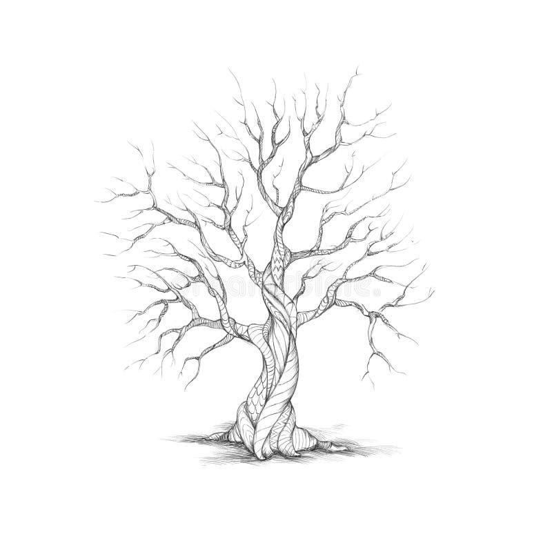 Baum mit spezieller Barke vektor abbildung