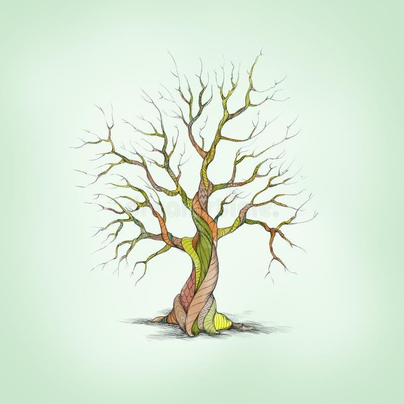 Baum mit spezieller Barke stock abbildung