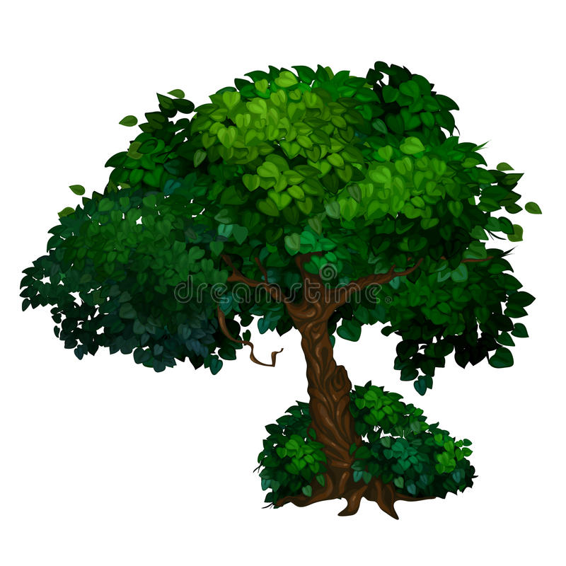 Baum mit verdrehtem Stamm und grüner Krone von Blättern stock abbildung