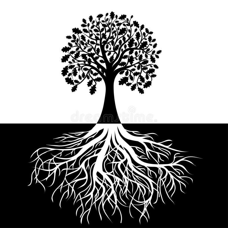 Baum mit Wurzeln auf Schwarzweiss-Hintergrund lizenzfreie abbildung