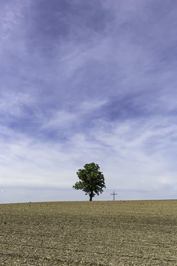 Baum nahe bei Kreuz unter enormem blauem Himmel lizenzfreies stockfoto