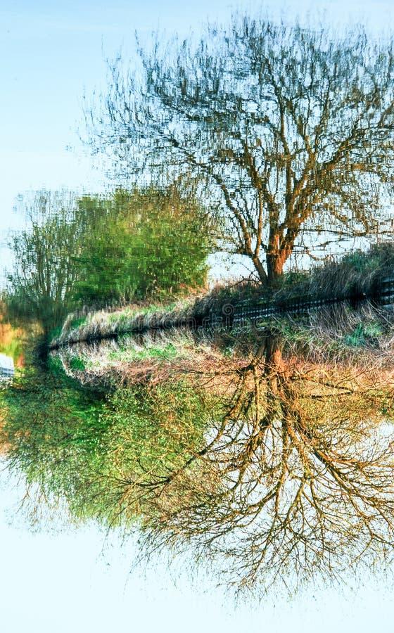 Baum-Reflexion auf dem Kanal, umgewandelt stockbilder