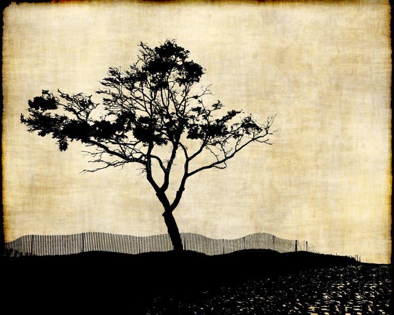 Baum-Schattenbild stock abbildung
