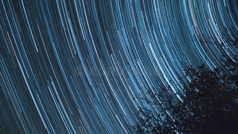 Baum-Stern-Spuren, Stern schleppt in der Nacht über Milchstraße, Raum, nächtlicher Himmel lizenzfreie stockfotos