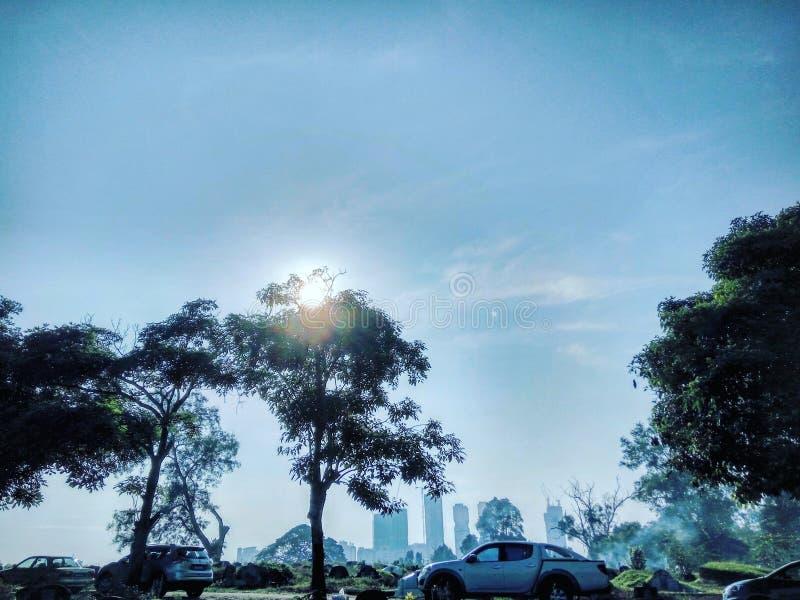 Baum u. Himmel stockbilder
