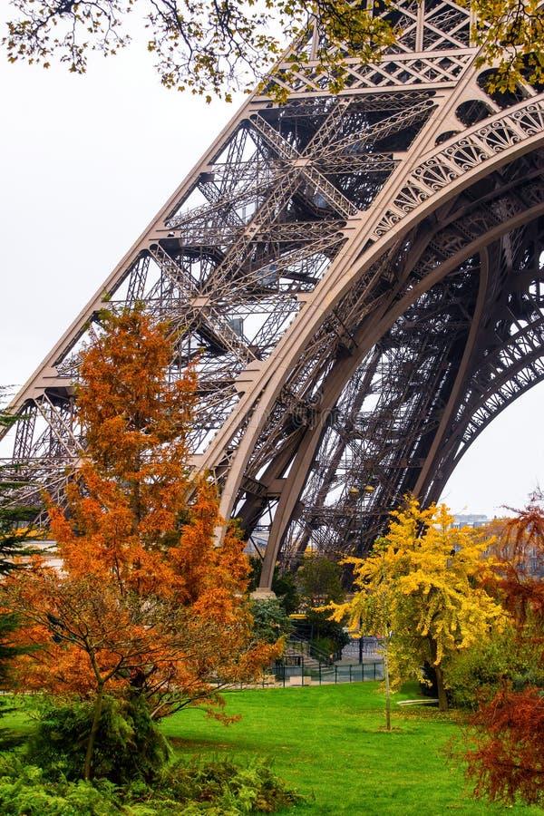 Baum- und Eiffelturmbein lizenzfreies stockfoto