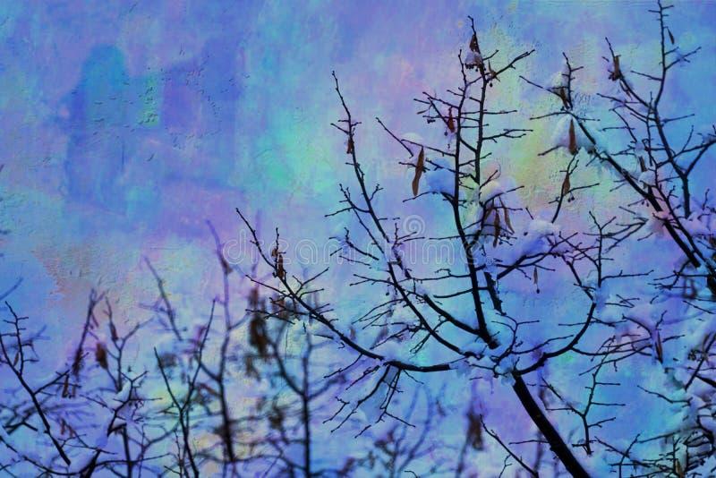 Download Baum Und Schnee In Der Winternacht Stockbild - Bild von eingefroren, szene: 106801383