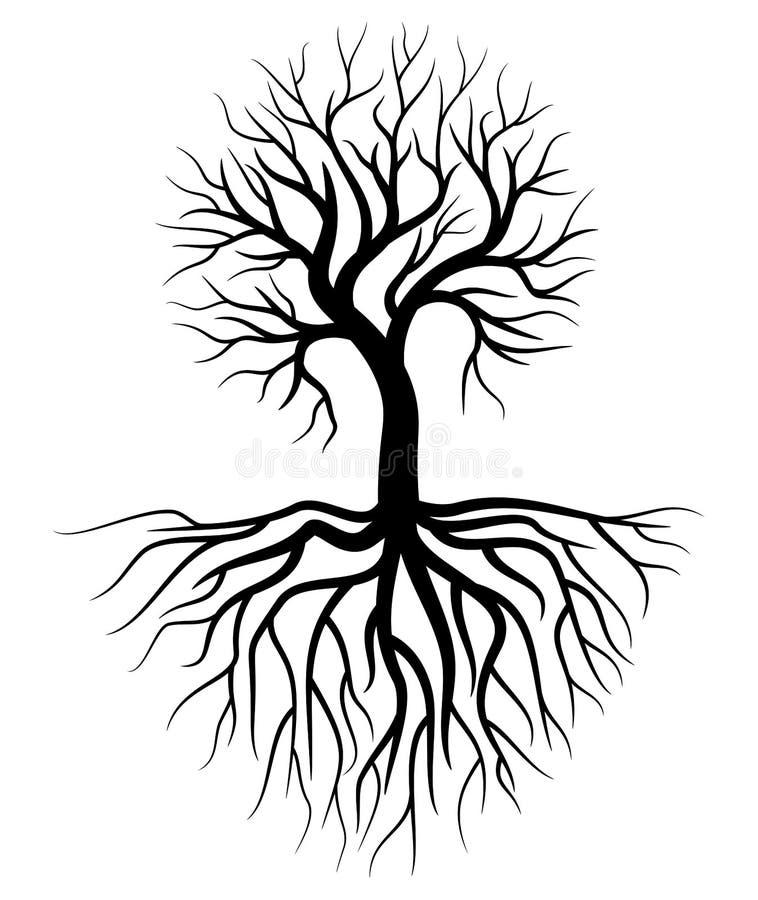 Baum-und Wurzel Illustrations-Vektor lizenzfreie abbildung