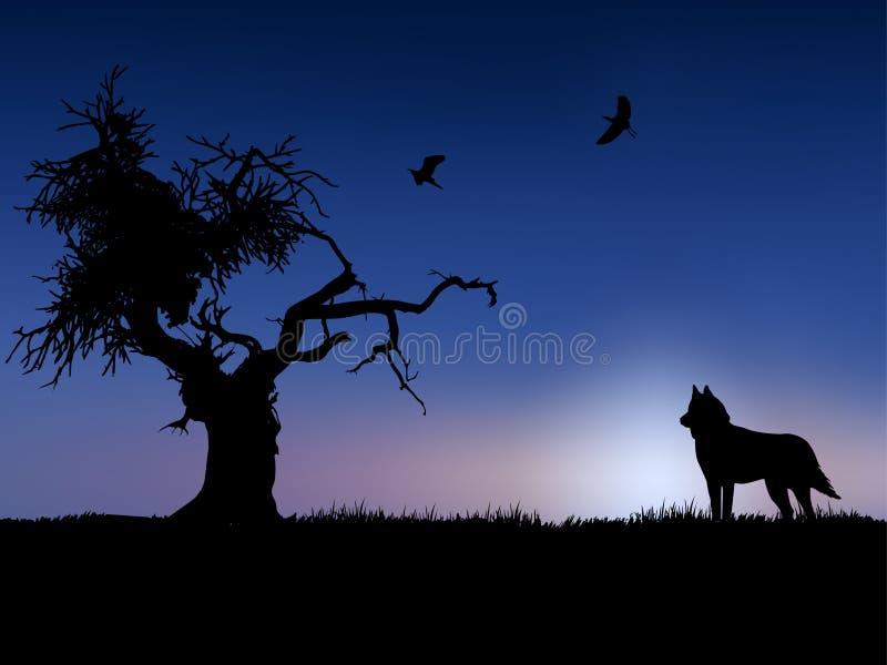 Baum, Vogel und Wolf in der Dämmerung lizenzfreie abbildung