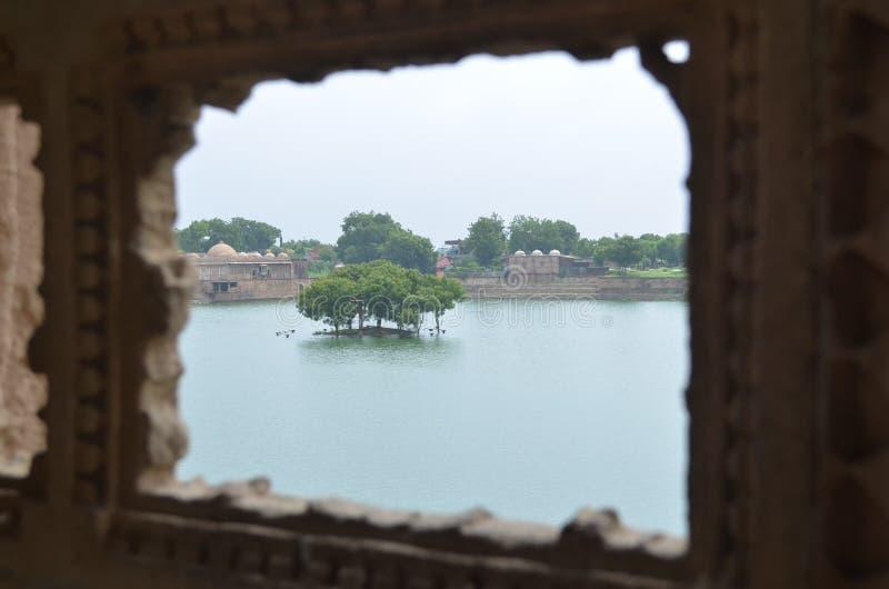 Baum vom Fenster lizenzfreies stockfoto