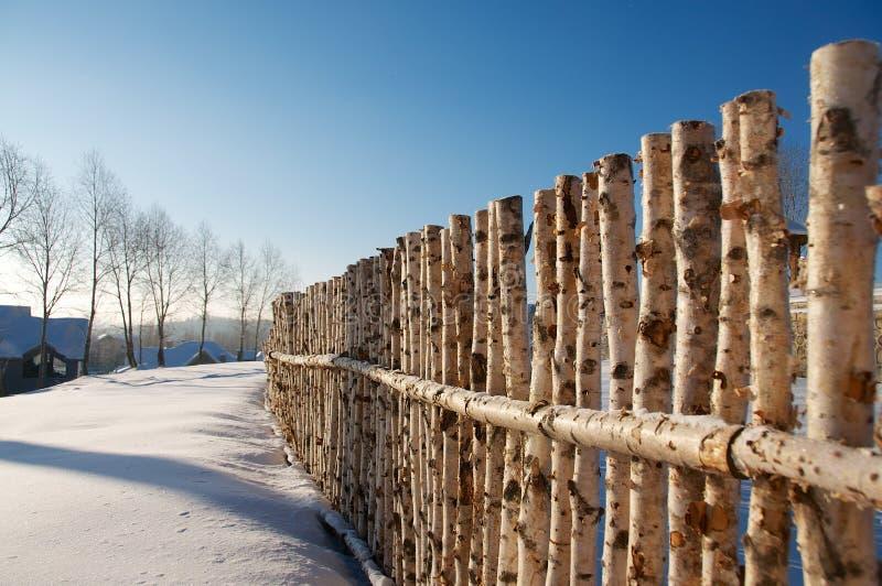Baum-Zaun in der Reihe lizenzfreie stockfotografie